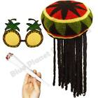 RASTA JAMAICAN CARIBBEAN HAT WIG DREADLOCKS PINEAPPLE GLASSES FANCY DRESS LOT