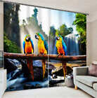 Three Parrots Wood 3D Blockout Photo Mural Printing Curtains Draps Fabric Window