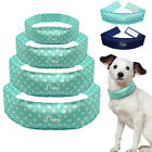 Didog Cool Cooling Pet Dog Collars Cooler Puppy Dog Necklace for Pets XS S M L