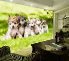 Dogs Puppies Grass Lawn Full Wall Mural Photo Wallpaper Print Kids Home 3D Decal