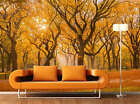 Falls in Central Park Full Wall Mural Photo Wallpaper Print Kids Home 3D Decal
