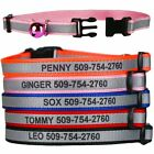 Personalized Laser Engraved Reflective Cat Collars for Cats