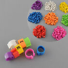 100Pcs Poultry Leg Bands Bird Pigeon Duck Hen Rings Clip 1-100 Numbered