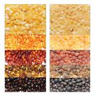 Genuine Loose Baltic Amber Beads Holed Baroque 5 Colors Raw Polished 10 g 20 g