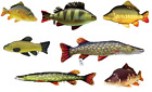 Gaby Novelty Coarse Fish Cushion Pillow Toy Fishing Bivvy Bed Chair Pillow