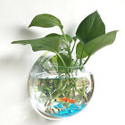 Acrylic Wall Mount Hanging Fish Bowl Tank Aquarium Wall Hanging Home Decor