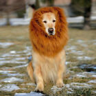 Pet Dog Costume Lion Mane Wig For Halloween Clothes Fancy Dress Up DH