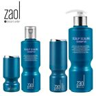 [Zaol Doctor's Order] Synergy Booster + Scaling Shampoo SET Hair loss management