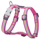 Red Dingo Stripe Design Harness HOT PINK for Dog / Puppy | XS - LG | FREE P&P