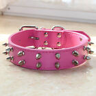 2 Rows Spiked Studded Leather Dog Collar for Medium Large Dog Pit Bull Terrier