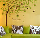 """98"""" Tall Photo Frame Large Tree Wall Decals Removable Vinyl Home Decor Stickers"""