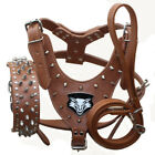 7 Colors Leather Spiked Studded Dog Harness Collar Leash set Pit Bull Terrier