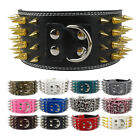 dog spike collars - 3.0