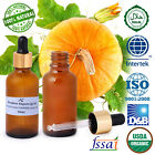 Ancient Healer 100 % Natural Pumpkin Oil Carrier Oil