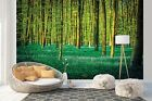 Wall Mural Photo Wallpaper Picture EASYINSTALL Fleece Forest Landscape Trees