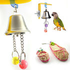 Parrot Bell Toys Birds Chewing Hanging Cage Bite Supplies Parakeet Beads Playing