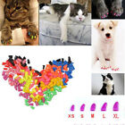 Popular Soft Rubber Pet Paw Claw Control Nail Caps Cover 20pcs For Dog Cat