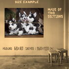 186936 CUTE SIBERIAN HUSKY PUPPIES WOLF PUP PUPPY DOGS Wall Print Poster UK