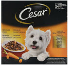 Best Cesar Dog Foods - Cesar Deliciously Fresh Adult Dog Food Pouches Favourites Review