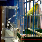 DIY Transparent Acrylic Bird Feeder Simple Install, Easy to Fill for Parrots