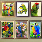 Внешний вид - Parrot 5D Diamond Painting DIY Embroidery Cross Stitch Home Decor Needlework Art