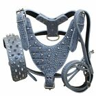 Spiked Studded Leather Dog Harness + Dog Collar Leash Lead set Large Dog Pitbull