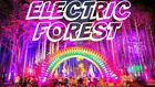 ELECTRIC FOREST music festival 4-day GA pass rothbury michigan ticket 6/27-6/30