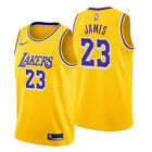 LeBron James #23 Los Angeles Lakers Men's Gold Icon Edition Jersey