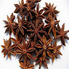 20Pcs Star Anise Seeds Medicinal Aromatics Cooking Spice Garden Plant Great