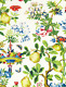 SCALAMANDRE SHANTUNG GARDEN FLORAL LINENPRINT MULTIPURPOSE FABRIC 5 YARDS