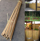 Professional Heavy Duty Thick Bamboo Canes Raw Garden Plant Support Pole 2ft-7ft