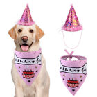 New dog pet birthday party hat dog age anniversary party saliva towel set UK