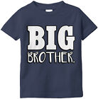 Big Brother. Announcement New Baby Sibling Match Brother Sister Infant T-Shirt