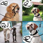 DT Dog Muzzle Halti Head Collar Stop Dog Pulling Halter Training Nose Reigns
