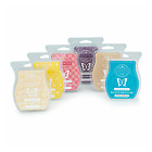 Kyпить  Scentsy Wax Bars Choice - $36 shipped You must get 6. READ DESCRIPTION на еВаy.соm