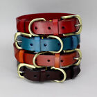 Plain Leather Dog Collar Adjustable for Xsmall Small Medium Large X-Large Dogs