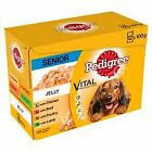 Pedigree Senior Complete Dog Food Pouches | Dogs