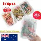 1/4pcs Real Dried Flowers For Art Craft Resin Pendant Jewellery Making Diy