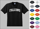 Falcons College Letters T-shirt