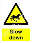 Horses Slow Down - COUN0003 Stickers & Signs