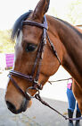 PADDED LEATHER BRIDLE WITH FREE RUBBER REINS. QUALITY BRIDLE WITH LOW PRICE