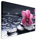 Pink Orchid Floral Flower Canvas Wall Art Picture - Large+ Any Size