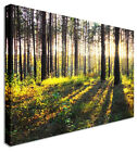 LARGE Wall Art Forest Sun Rays Canvas Pictures For Home Interiors
