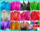 100pcs/lot preety rooster feather 10-15cm 4-6 inches colour optional