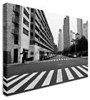 Zebra Crossing Argentina City Urban Canvas Wall Art Pictures For Home Interiors