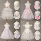 Colorful Bow New Flower Girl Party Bridesmaid Wedding Pageant Dress 2~11 Years