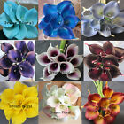 18PCS Real Touch Calla Lily Wedding Bridal Bouquet Flowers Home Party Decor Posy