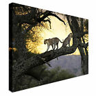 large leopards in the trees african Canvas Wall Art Print Large + Any Size
