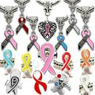 AWARENESS RIBBON Charms Beads For Silver Charm Bracelets