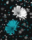 Teal Home Decor/Daisy Flower Wall Art Decor Picture